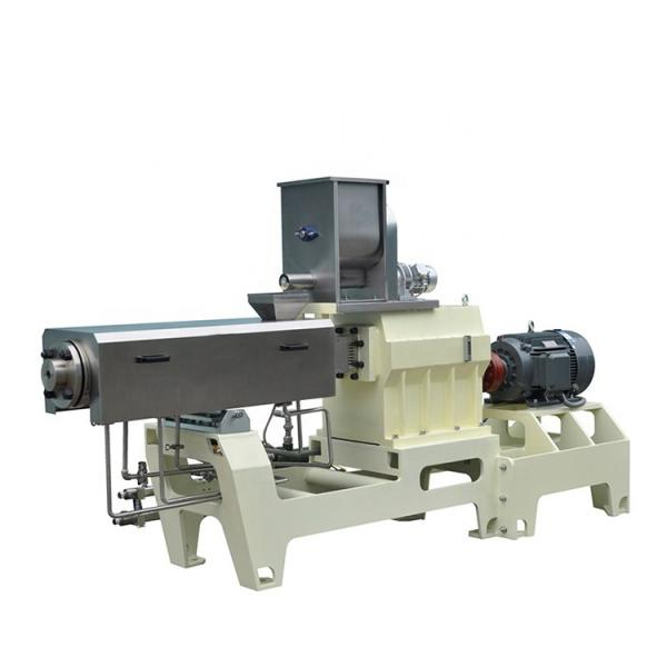 Extruded Pellet Frying Snack Food Making Machines for Screw /Shell/Chips